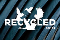Recycled Series